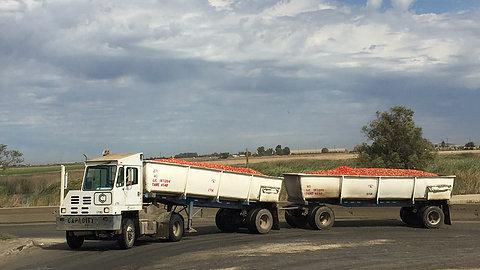 Truck Driving Jobs   Morning Star Trucking   Employment